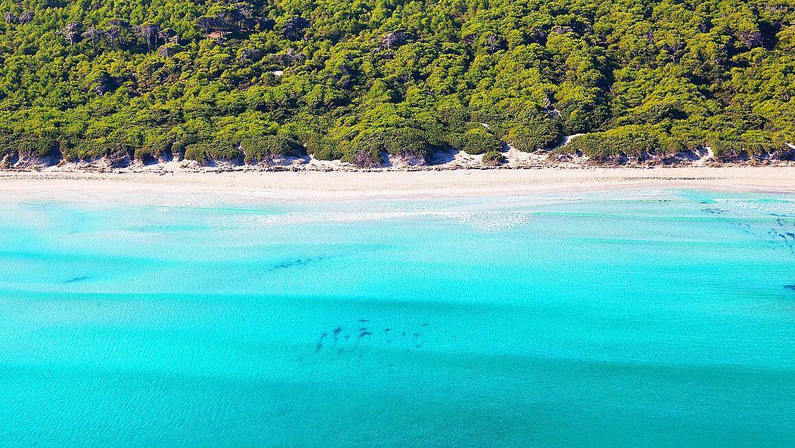 Playa De Muro Karte.Beach Bucht Von Alcudia Near Muro In The North Of Mallorca